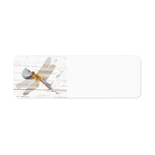 Dragonfly on Rock Return Address Label