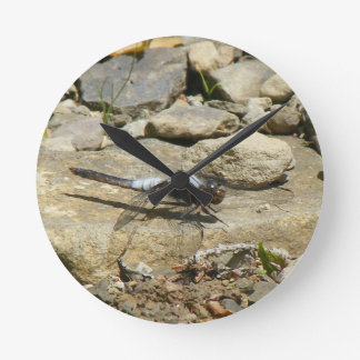 Dragonfly On Stone Wall CLock
