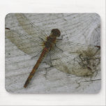 Dragonfly on Wood Mouse Pad