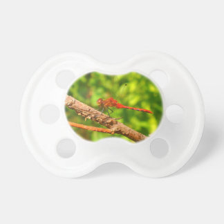Dragonfly Pacifier