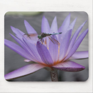Dragonfly Perched on Lilly Mousepad