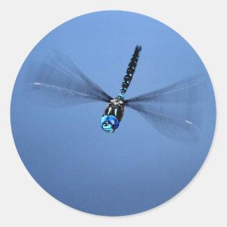 Dragonfly Photo Round Sticker