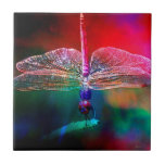 DRAGONFLY PINK DELIGHT.jpg