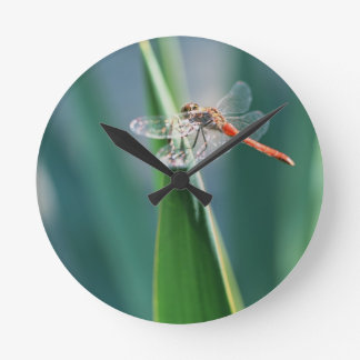 Dragonfly Round Clock