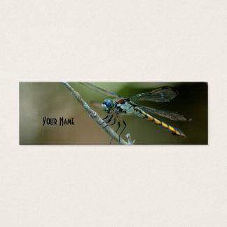dragonfly skinny card 2