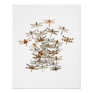 Dragonfly Swarm Poster