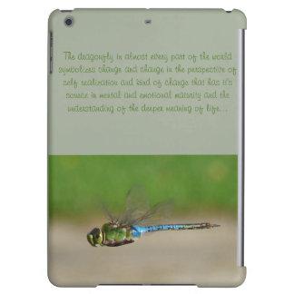 Dragonfly Symbolizes Change