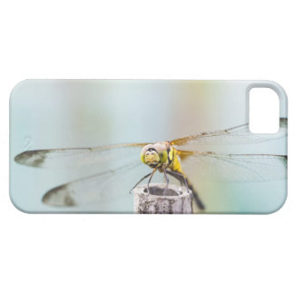 Dragonfly (Sympetrum infuscatum) 2 iPhone 5 Cases