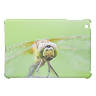 Dragonfly (Sympetrum infuscatum) iPad Mini Cases