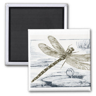 dragonfly theme magnet