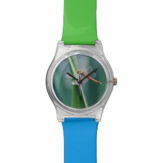 Dragonfly Watch