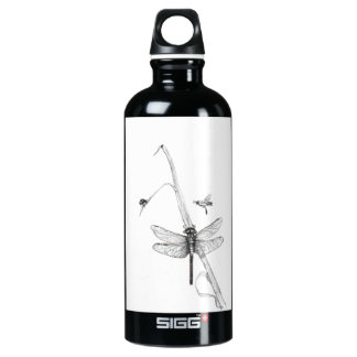 dragonfly water bottle