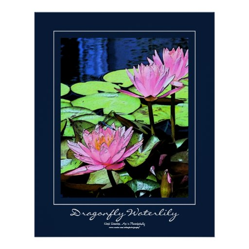 Dragonfly Waterlily Blue Border Poster