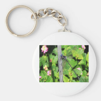 Dragonfly with blue eyes key chain