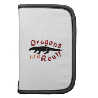 Dragons Are Real Folio Planner