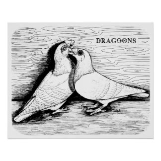 Dragoon White Pair Print