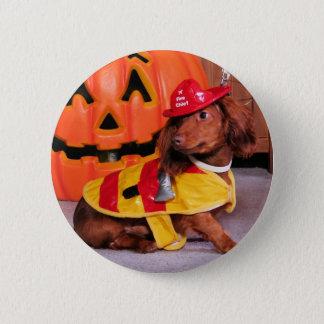 Drake - Dachshund 6 Cm Round Badge