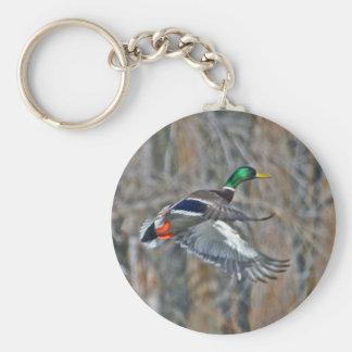 Drake mallard in flight basic round button key ring