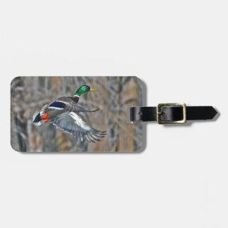 Drake mallard in flight tag for bags