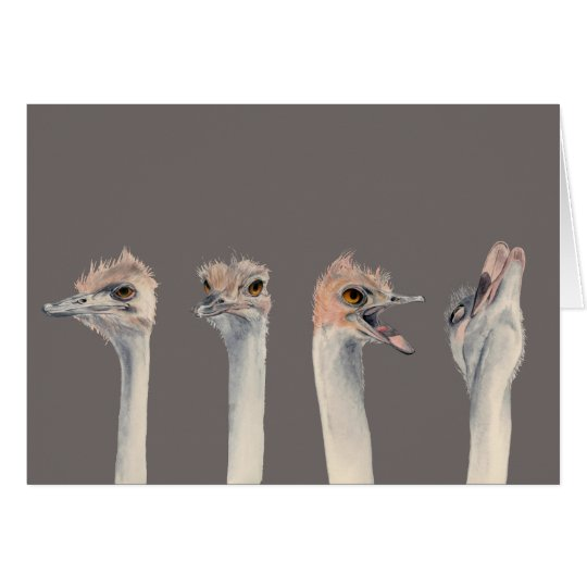 """""""Drama Queen"""" Funny Ostriches Painting Card"""