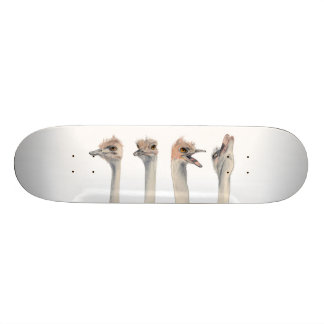 """Drama Queen"" Skateboard Deck"