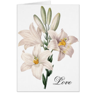 Dramatic Black and White Lilies Greeting Card