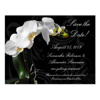 Dramatic Black White Orchid Flower Save the Date Postcard