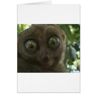 Dramatic Lemur Card