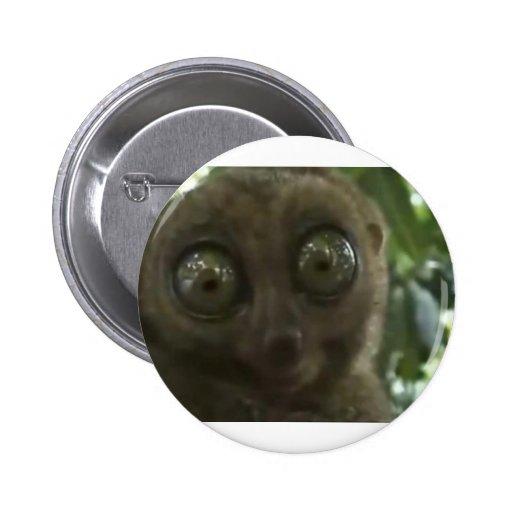 Dramatic Lemur Pinback Buttons