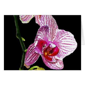 Dramatic Orchid Invitation Greeting Card