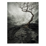 Dramatic sky over old lonely tree post card