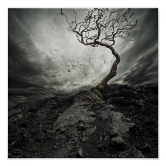 Dramatic sky over old lonely tree poster