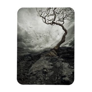 Dramatic sky over old lonely tree rectangular magnets