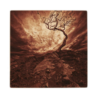 Dramatic Sky Over Old Lonely Tree Wood Coaster