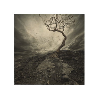 Dramatic sky over old lonely tree wood print