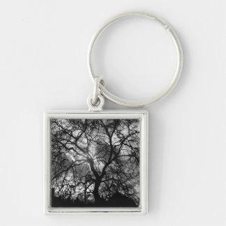 Dramatic Tree Silhouette Key Ring