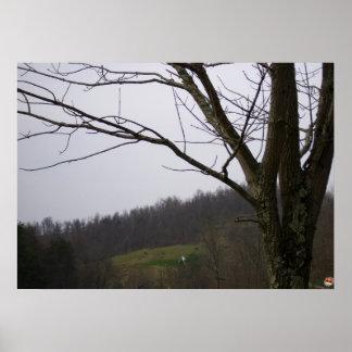Dramatic tree surveys his domain poster