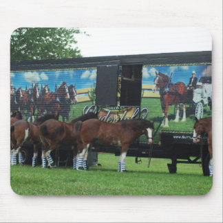Draught   Horse Show Mouse Pad