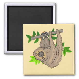 Drawing of a Sloth Hanging Upside Down Magnet
