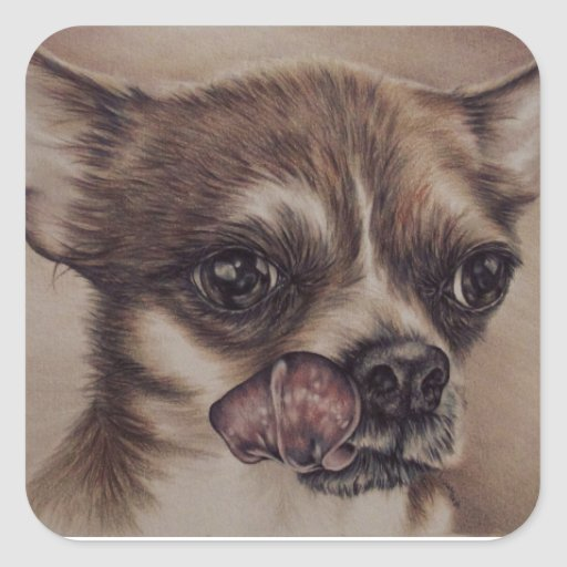 Drawing of chihuahua on a sticker