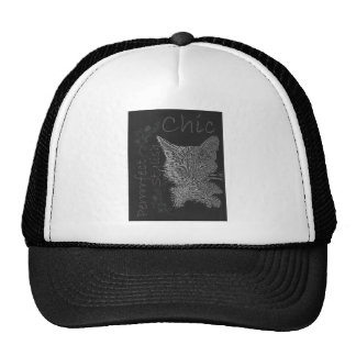 Drawing of Sleepy Cat in Chalk Mesh Hats