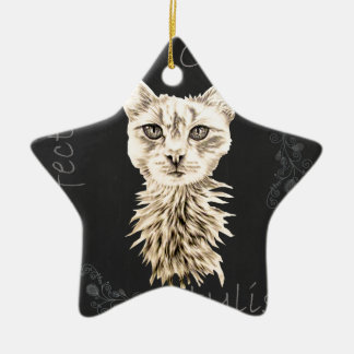 Drawing of White Cat in Chalk Ceramic Star Decoration
