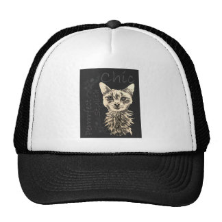 Drawing of White Cat in Chalk Hat