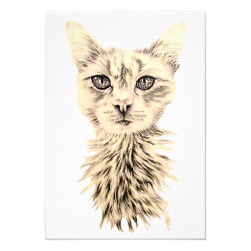 Drawing of White Cat on Invitation