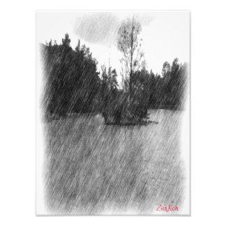 Drawing pond small Island Art Photo