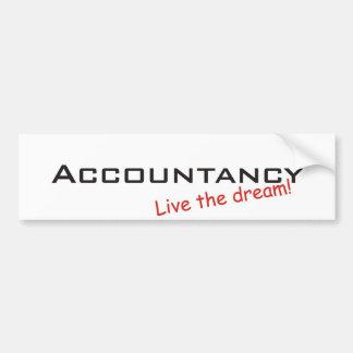 Dream / Accountancy Bumper Sticker
