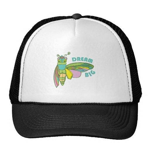 Dream Big Mesh Hats