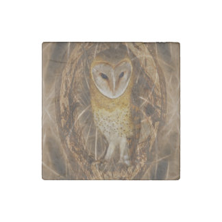 Dream catcher owl stone magnet