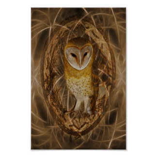 Dream catcher owl poster