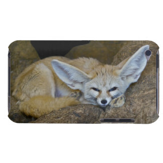 Dream Ears iPod Touch Case-Mate Case